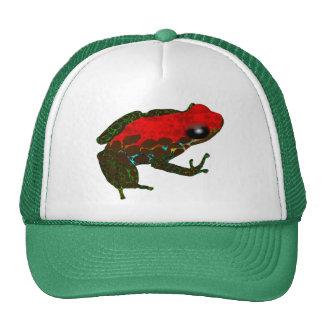 Rainforest Dart Frog Mesh Hats