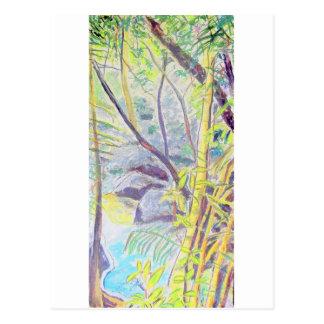 Rainforest Delight Postcards