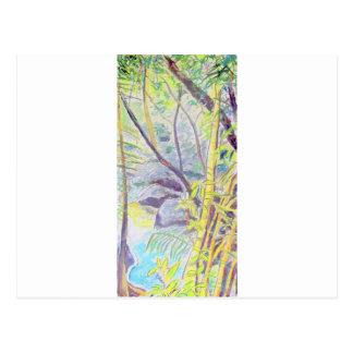 Rainforest Delight Postcard