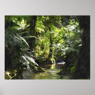 Rainforest in Marysville - Victoria, Australia Poster