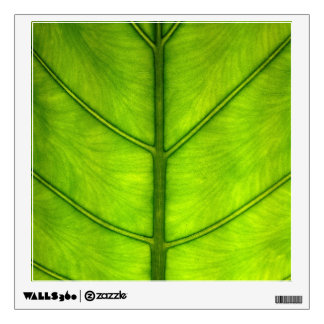Rainforest Leaf Wall Sticker