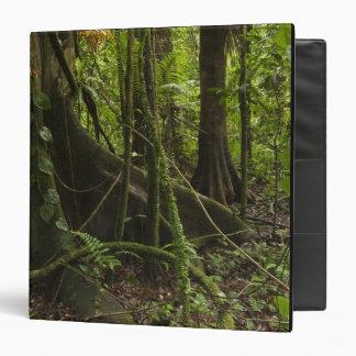 Rainforest, Mapari River North Rupununi, Vinyl Binder
