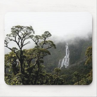 rainforest mouse pad