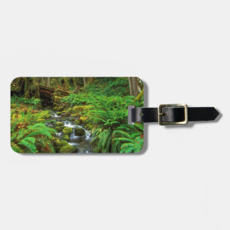 Rainforest Olympic NP Bag Tag
