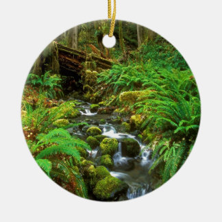 Rainforest Olympic NP Ceramic Ornament