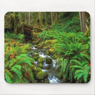 Rainforest Olympic NP Mouse Pad