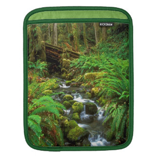 Rainforest Olympic NP Sleeves For iPads