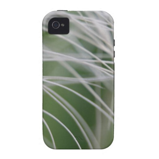 Rainforest Palm Tree Leaf Close Up iPhone 4/4S Cover
