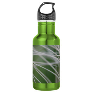 Rainforest Palm Tree Leaf Close Up Stainless Steel Water Bottle