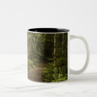 Rainforest Path Two-Tone Coffee Mug