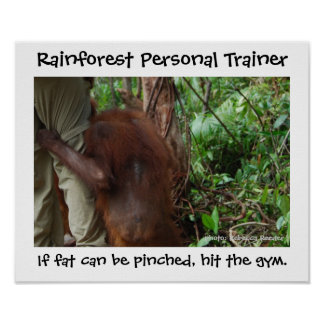 Rainforest Personal Trainer Poster
