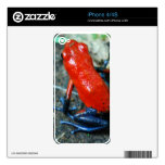 Rainforest Poison Dart Frog Decals For iPhone 4S