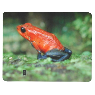 Rainforest Poison Dart Frog Journal