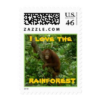 Rainforest Postage Stamps