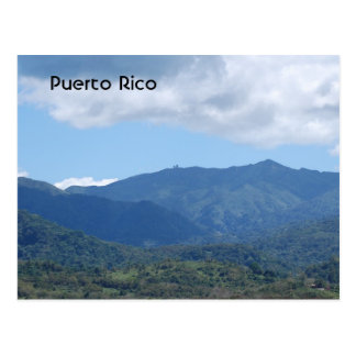 Rainforest Post Card