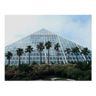 Rainforest pyramid, southern Texas, U.S.A. Postcard
