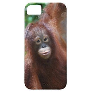 Rainforest Redhead Orangutan iPhone SE/5/5s Case