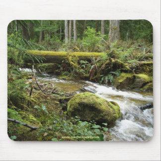 Rainforest Stream II Wilderness Nature Photo Mouse Pad