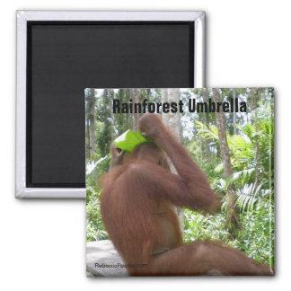 Rainforest Umbrella 2 Inch Square Magnet