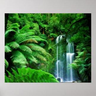 Rainforest & Waterfalls Poster
