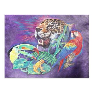 Rainforest Wildlife in Harmony Postcard