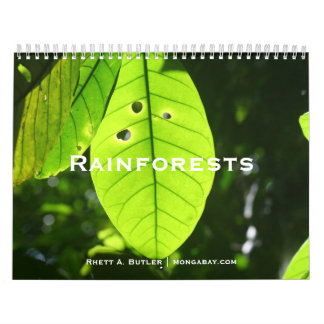 Rainforests Calendar