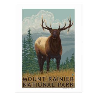 Rainier National Park, WashingtonElk Scene Postcard