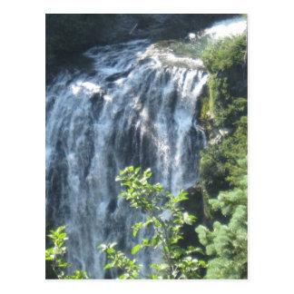 Rainier Waterfall Postcard
