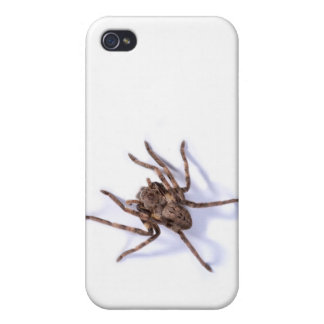 Rainspider Cover For iPhone 4