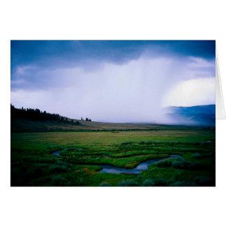 Rainstorm over the Cochetopa River , Co. Card