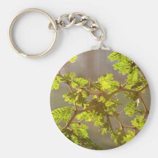 Raintree Branches Bonsai Photo Keychain