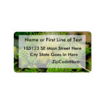Raintree plant in bloom Green leaves Personalized Address Labels