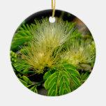 Raintree plant in bloom Green leaves Christmas Ornament
