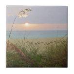 "Rainy Beach Sunset Tile<br><div class=""desc"">Raining beach sunset blue and pink</div>"
