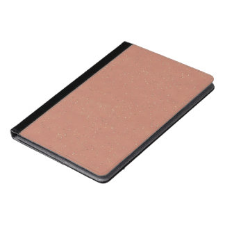 rainy day 14216 peach (I) iPad Air Case