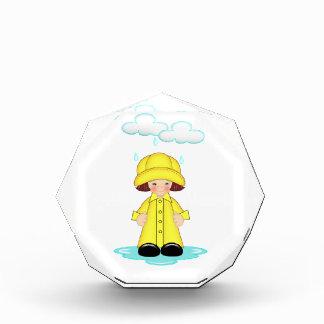 Rainy Day Acrylic Award