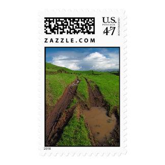 Rainy day at the pasture stamp