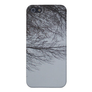 Rainy Day Covers For iPhone 5