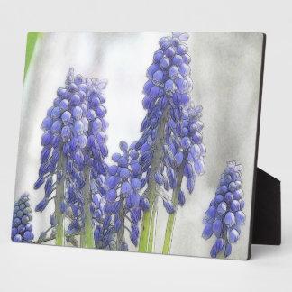 Rainy Day Grape Hyacinths Photo Plaque