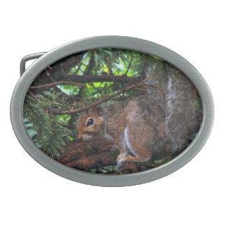 Rainy Day Squirrel Belt Buckle