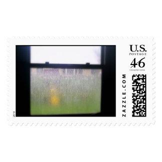 rainy day stamps