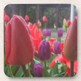 Rainy Day Tulips Beverage Coaster