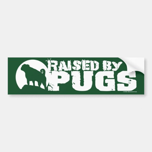 RAISED BY PUGS Green Bumper Sticker Car Bumper Sticker