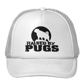 RAISED BY PUGS Hat