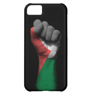 Raised Clenched Fist with Palestinian Flag iPhone 5C Cover