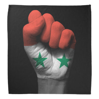Raised Clenched Fist with Syrian Flag Bandana