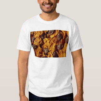 Raisin and bran cereal Photo Tee Shirt
