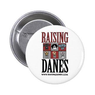 Raising Danes Logo The Color Chart Pins