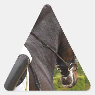 Raising Triangle Sticker