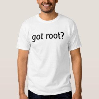 ¿raíz conseguida? (ningunos cartabones) poleras